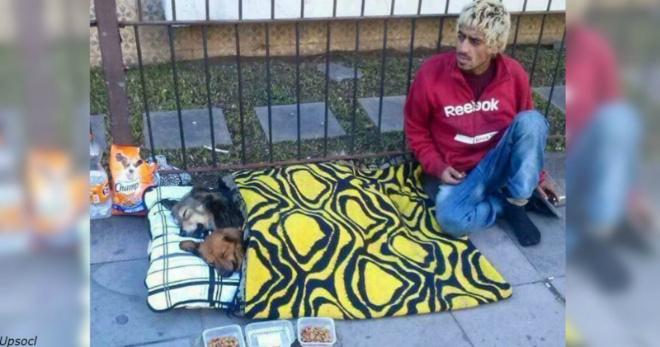 Их богатство – в их сердцах: 15 бездомных, которые собакам отдали все