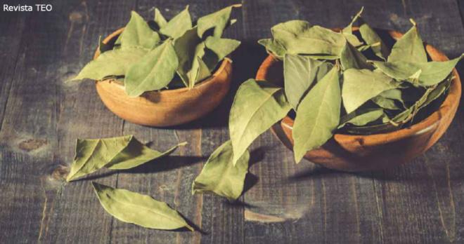 Чтобы привлечь в дом удачу, возьмите три лавровых листа – и делайте так