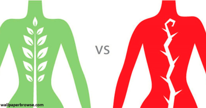 7 упражнений на растяжку, которые сделают позвоночник гибче, а вас – моложе