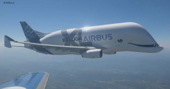 Новый самолет Beluga – самый милый и симпатичный в мире. Зачем он такой?