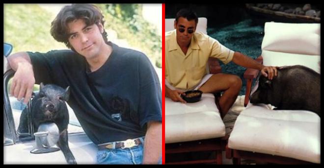 «Любовь длиной в жизнь»: история самой крепкой пары Голливуда — Джордж Клуни и его кабан!