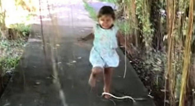 Маленькая девочка прославилась в Сети, потому что не заметила нападения змеи