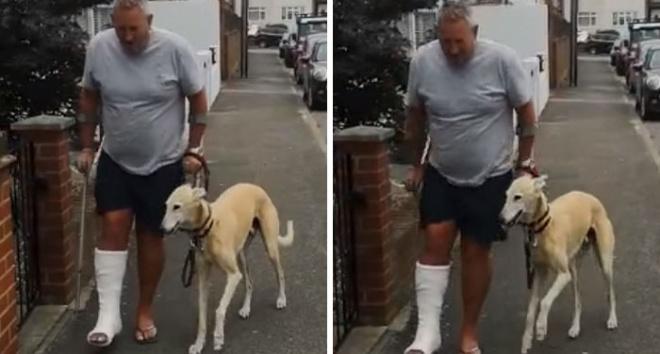 Владелец потратил $400 и узнал, что пес хромает не из-за того, что болен