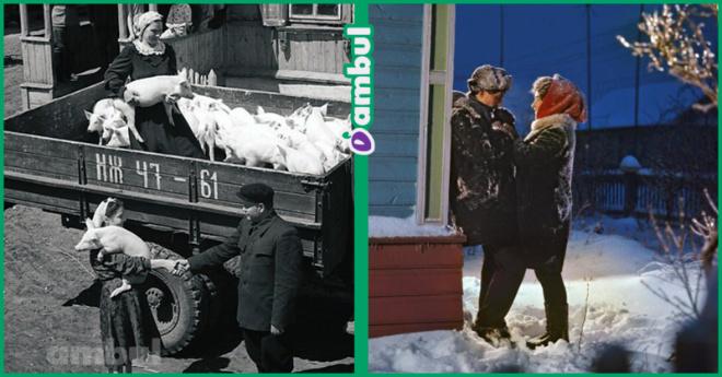 7 атмосферных советских фото, которые вызовут ностальгию по СССР