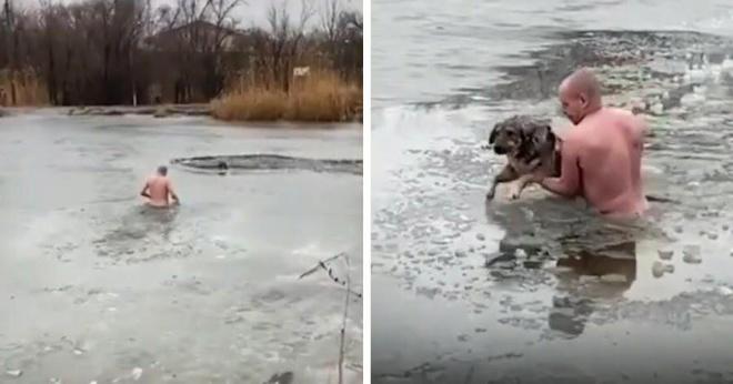 Герой в трусах: ветеран Чечни спас собаку, бросившись в ледяную воду