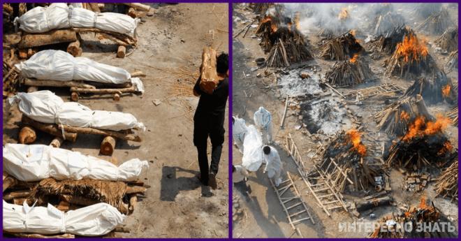 Всюду погребальные костры… В Индии число зараженных превзошло мировой рекорд